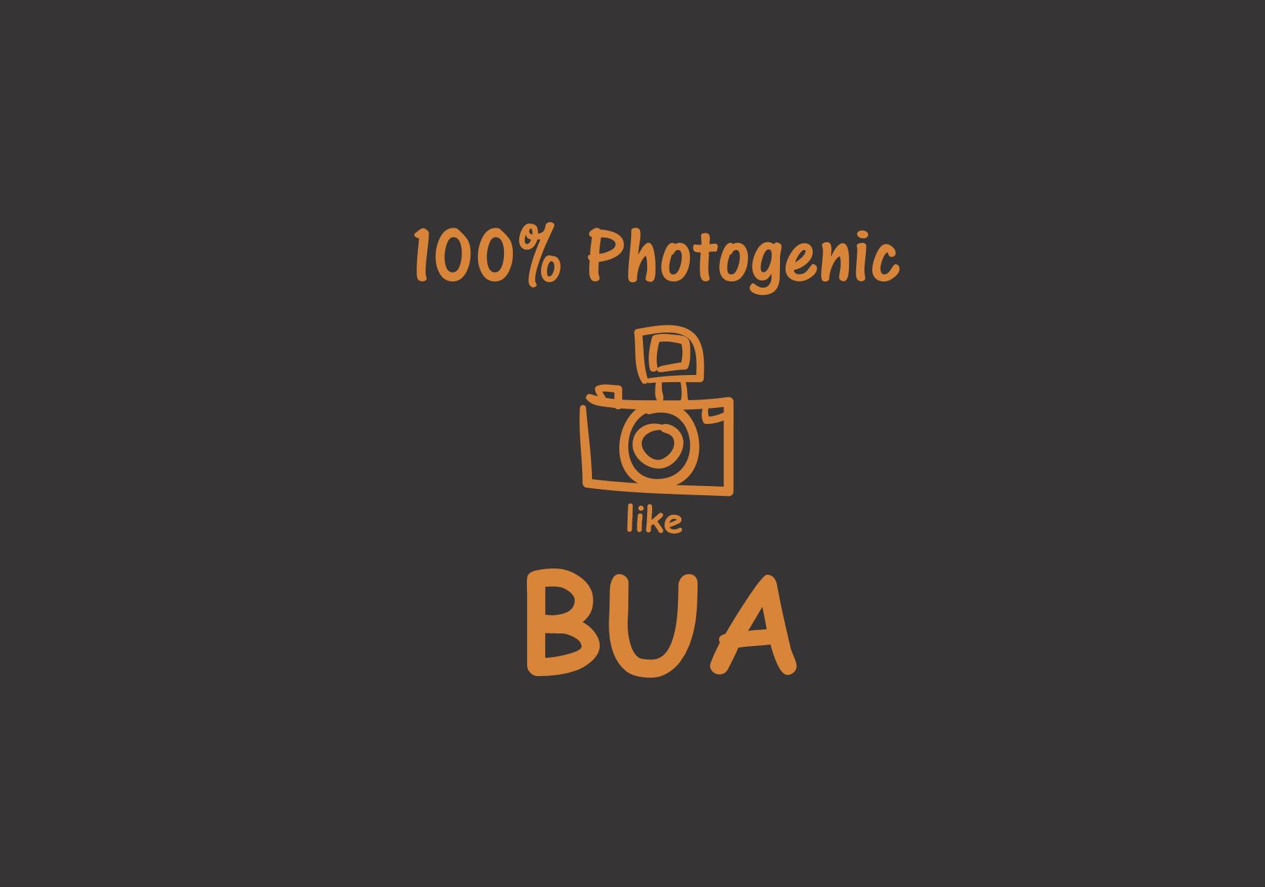 photogenic-like-bua.png